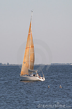 Free Sailboat 2 Royalty Free Stock Images - 143099