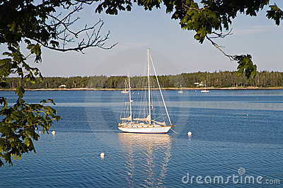 Sailboat anchored in harbor