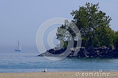 Sailboat By Beach Coastline