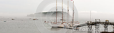 Sailboat at dock in fog