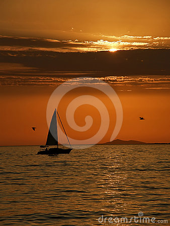 Sailboat and gull at sunset