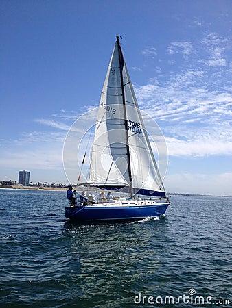 Long Beach Sailboat Race