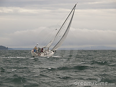 Sailboat Race in a Winter Storm