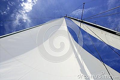 Sailboat sailing blue sea on sunny summer day