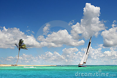 Sailboat Sailing on Tropical Seas
