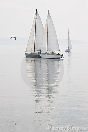 Free Sailboats Calm Water Fog Royalty Free Stock Photography - 3387717