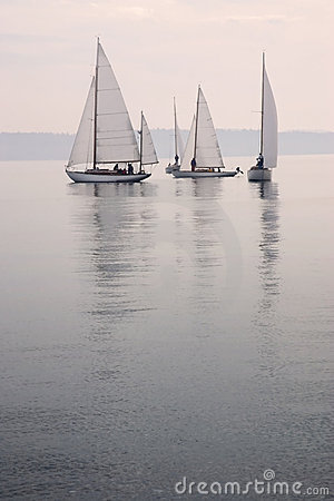 Sailboats calm water fog