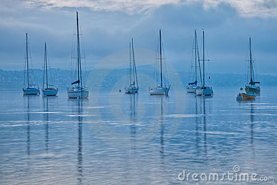 Sailboats at Dawn