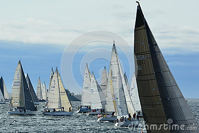 Sailboats getting ready for the start of the race. Editorial Image