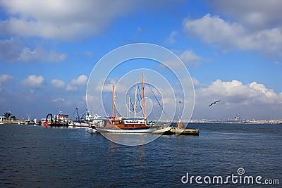 Sailboats moored
