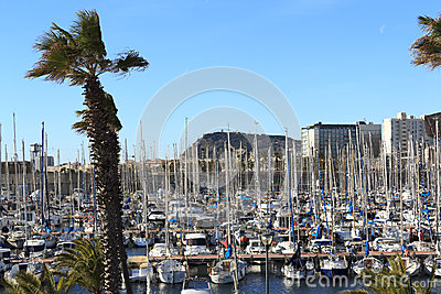 Sailboats moored in the harbor Editorial Photo
