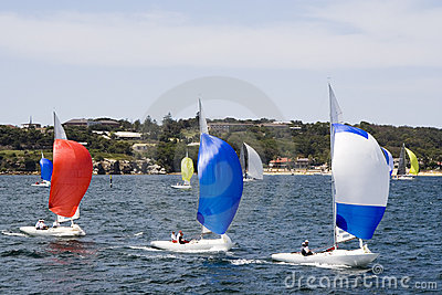 Sailboats in Sydney Harbor