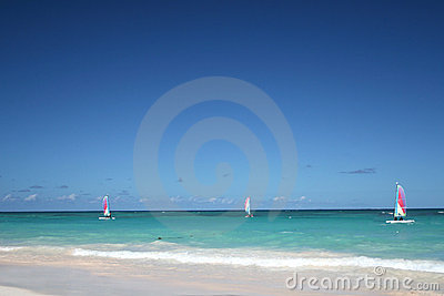 Sailboats in a tropical ocean