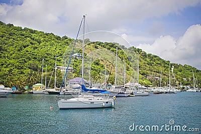 Sailboats in the tropics