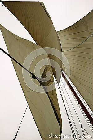 Free Sailing Royalty Free Stock Images - 5616429