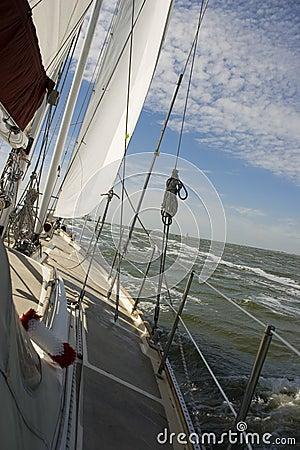 Free Sailing Royalty Free Stock Photography - 5799637