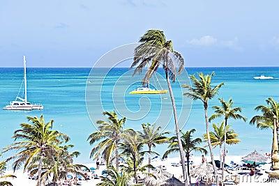 Sailing in the blue caribic sea