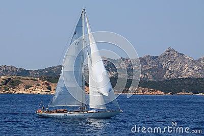 A sailing boat around La Maddalena archipelago Editorial Stock Image
