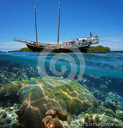 Free Sailing Boat Stranded On Reef With Fish And Coral Stock Photo - 42282120