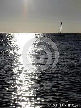 Free Sailing In The Sun Stock Photo - 207480