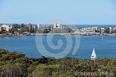 Sailing Manly Cove