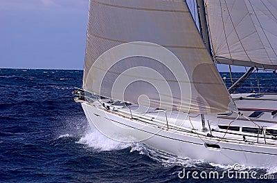 Sailing in regatta