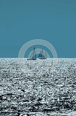 Sailing on Sparkling Seas