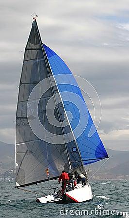 Sailing, yachting #8