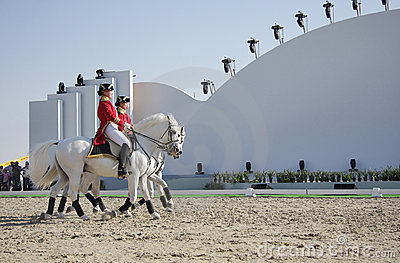 Sakhir, Bahrain Nov 26: Lipizzaner Stallions sho Editorial Stock Photo