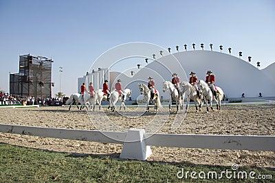 Sakhir, Bahrain Nov 26: Lipizzaner Stallions show Editorial Photography