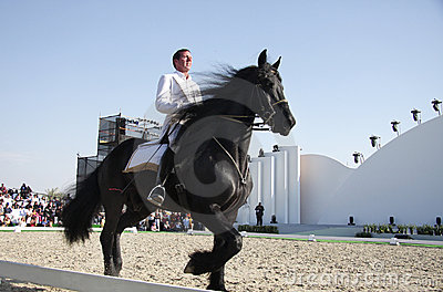 Sakhir, Bahrain Nov 26: Lipizzaner Stallions show Editorial Stock Photo