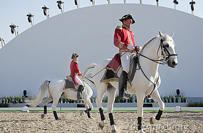 Sakhir, Bahrain Nov 26: Lipizzaner Stallions show Editorial Stock Photo