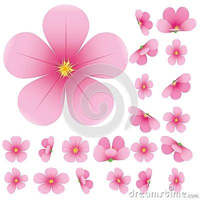 Free Sakura Flowers Royalty Free Stock Photography - 18703607
