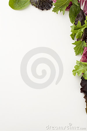 Salad Border Royalty Free Stock Image - Image: 13693306 Leaves Clipart