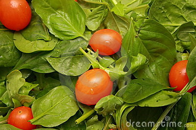 Salad with Cherry Tomatoes