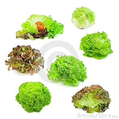Free Salad Collection 01 Stock Photos - 11126313