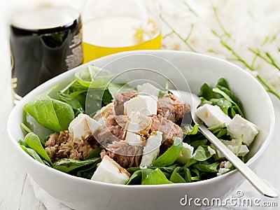 Salad with fresh spinach and tuna