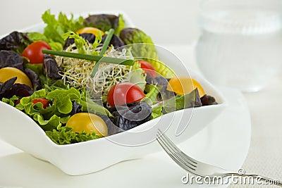Salad meal time