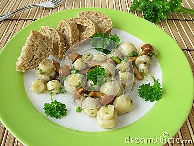 Salad with mushrooms