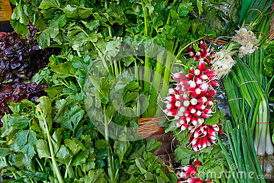 Salad and radish