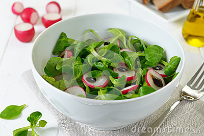 Stock Photo: Salad with radish