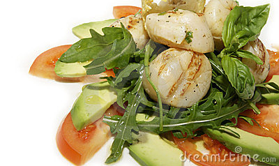 Salad of scallops