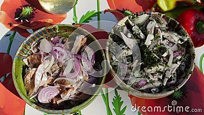 Salade d'omelette marinée à l'oignon et à l'aneth banque de vidéos
