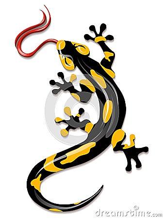 Free Salamander Stock Image - 50709681