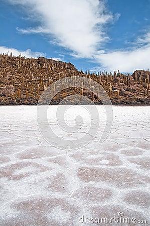 Salar de Uyuni, Salt flat (Bolivia)