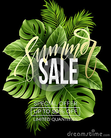 Free Sale Banner, Poster With Palm Leaves, Jungle Leaf And Handwriting Lettering. Floral Tropical Summer Background. Vector Stock Photos - 91190953
