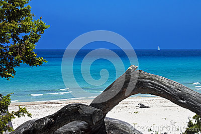 Saleccia Beach, Corsica