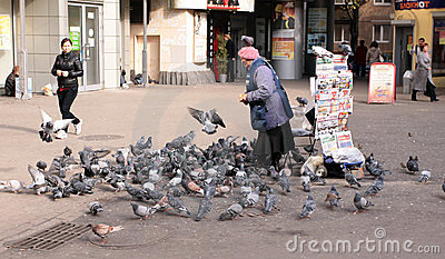 Saleswoman is feeding pigeons Editorial Stock Photo