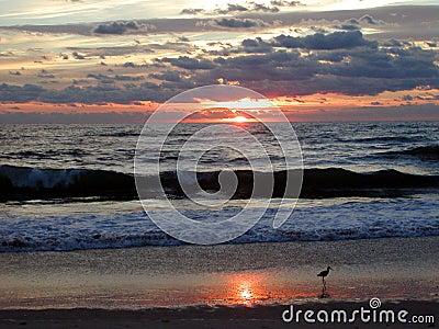 Salida del sol 7 del océano
