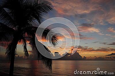 Salida del sol tropical sobre el océano